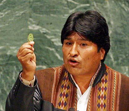 http://bolivia.pordescubrir.com/wp-content/uploads/2009/12/hoja-coca.jpg